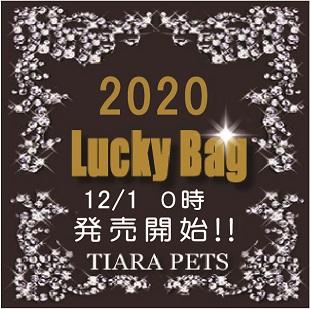 福袋バナー2020
