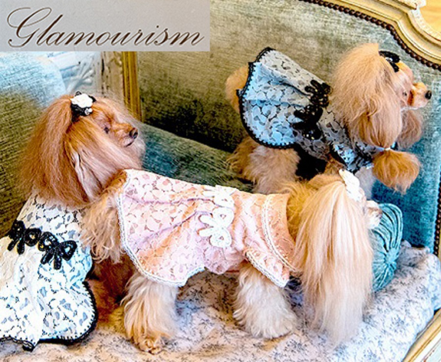 Glamourism グラマーイズム