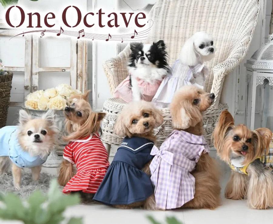 One Octave ワンオクターヴ