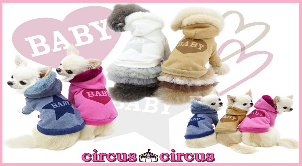 circuscircus
